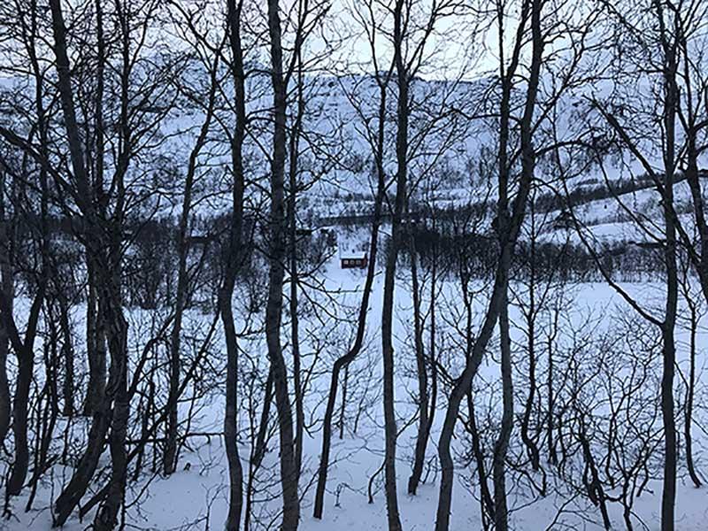 Paisajes desde el tren noruegos en invierno