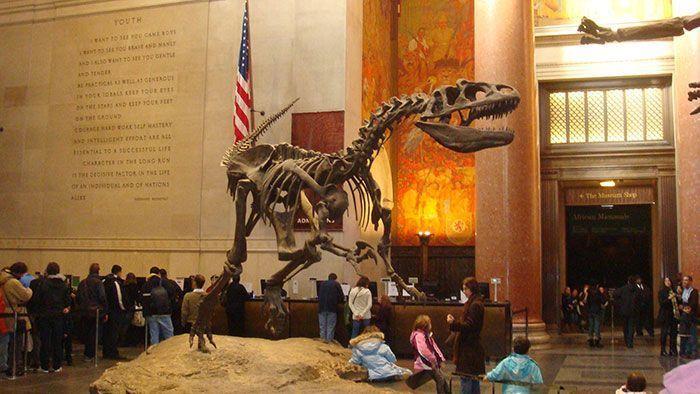 Museo de Historia Natural Nueva York